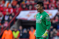 20131215 - LEUVEN, BELGIUM: Illustration picture shows and Standard's goalkeeper Eiji Kawashima pictured during the Jupiler Pro League match between Standard de Liege and KRC Genk, in Liege, Sunday 15 December 2013, on the nineteenth day of the Belgian soccer championship. BELGA PHOTO JASPER JACOBS