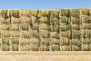 stack of rectangular hay bales in a field near Donald, Victoria, Australia <br /> <br /> Editions:- Open Edition Print / Stock Image