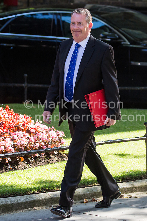 London, UK. 23 July, 2019. Liam Fox MP, Secretary of State for International Trade and President of the Board of Trade, arrives at 10 Downing Street for the final Cabinet meeting of Theresa May's Premiership. The name of the new Conservative Party Leader, and so the new Prime Minister, will be announced at a special event following the meeting.