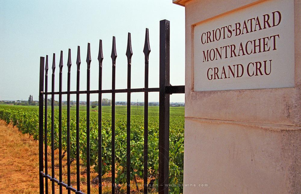 An iron gate and gate post to the Grand Cru Vineyard Criots Batard Montrachet belonging to Roger Belland, Santenay, Bourgogne