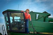 Ann Hargis harvest Baker's Ann Wheat