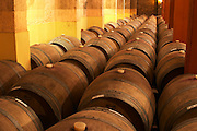 Barrels for storing the wine in wood. Bodega Castillo Viejo Winery, Las Piedras, Canelones, Uruguay, South America