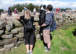 © Licensed to London News Pictures.26/08/15<br /> Egton, UK. <br /> <br /> A couple stand with their dog looking at the sheep pens at the 126th Egton Show in North Yorkshire. <br /> <br /> Egton is one of the largest village shows in the country and is run by a band of voluntary helpers. <br /> <br /> This year the event featured wrought iron and farrier displays, a farmers market, plus horse, cattle, sheep, goat, ferret, fur and feather classes. There was also bee keeping, produce and handicrafts on display.<br /> <br /> Photo credit : Ian Forsyth/LNP