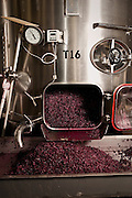 wine production at Long Shadows Vintners, pressed grapes in front of steel tank.