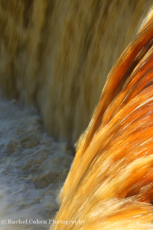 """""""Liquid Amber""""<br /> <br /> Tahquamenon Falls in amber and gold.<br /> <br /> Waterfalls by Rachel Cohen"""