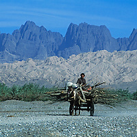 A Uygar villager carries firewood to market on a horse cart.  Behind him is the arid Kara Tagh range (Black Mountains) on the edge of the Taklaimakan Desert.