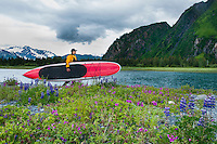 Man carries stand up paddle board through wildflowers next to tributary river and Bear Lake, Kenai Fjords National Park, Alaska.
