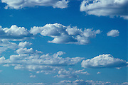 Bright blue sky with white clouds rolling through.