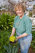Yvonne Savio holding a head of broccoflower. Yvonne Savio,  Master Gardener Coordinator at UC Cooperative Extension's Common Ground Garden Program, offers training at a workshop in her garden in Pasadena. Once trained, Master Gardeners provide free gardening workshops and their technical expertise to approximately 60 public community gardens, hundreds of school gardens, and many senior and shelter gardens throughout Los Angeles County. California, USA