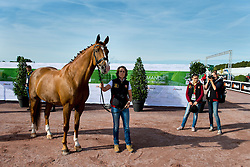 Michel George, (BEL), FBW Rainman - Horse Inspection Para Dressage - Alltech FEI World Equestrian Games™ 2014 - Normandy, France.<br /> © Hippo Foto Team - Jon Stroud<br /> 25/06/14