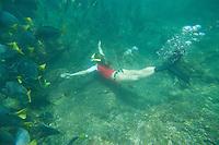 Young woman snorkeling with Razor Fish in the Galapagos Islands, Ecuador.