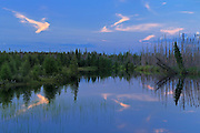 Boreal forest and bog reflected in wetland<br /> South of Pickle Lake<br /> Ontario<br /> Canada