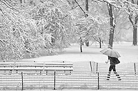 A snow storm in Central Park