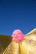 A person wearing a bright pink wig and golden dress-piece at Brighton beach during the Brighton Pride Parade on 6th August 2016 in Brighton in the United Kingdom.