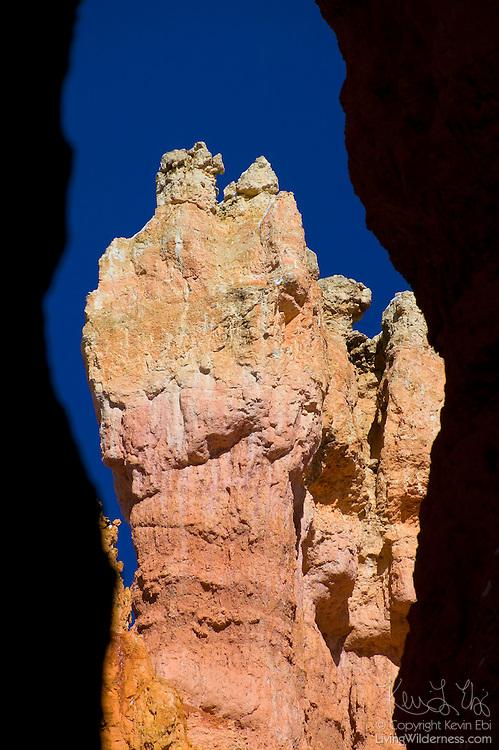 The steep canyon walls of Wall Street frame a tall hoodoo in Bryce Canyon National Park, Utah.