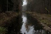 Spandauer Forest, Berlin/Brandenburg border