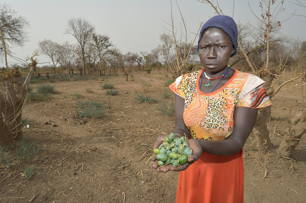"""Regina Abuk displays wild fruits on which she and her neighbors survive in Yang Kuel, a village in South Sudan's Lol State where a persistent drought has destroyed crops and left people hungry. The fruit--a so-called """"hunger food""""--must be dried, pulverized, and boiled before it can be eaten.<br /> <br /> A local partner of Christian Aid, a member of the ACT Alliance, dug a new well for the community in 2016, providing a source of safe water and saving Abuk a one-hour walk to a well. The organization has also distributed food vouchers to hungry families in the region."""