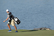 John Yarborough, caddie for golfer Smylie Kaufman runs away from an alligator after unexpectedly seeing it lying on the bank of a lake while walking along the sixth fairway during the second round of the Arnold Palmer Invitational golf tournament in Orlando, Fla., Friday, March 17, 2017. (AP Photo/Phelan M. Ebenhack)