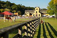 Old Bethpage, New York, USA. 28th September 2014. Palomino horses graze on grass inside a wood slat fence, with the large Exhibition Hall in the background, at the 172nd Long Island Fair, a six-day fall county fair held late September and early October. A yearly event since 1842, the old-time festival is now held at a reconstructed fairground at Old Bethpage Village Restoration. The Palomino has a gold coat and white mane and tail.