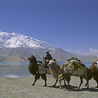 CHINA, Xinjiang Province. Kyrgyz nomad leads Baktrian camel train by Lake Karakul in the Pamir Mountains.  7546m Mustagh Ata background.