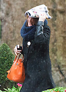 © Licensed to London News Pictures. 18/11/2014. Westminster, UK. A woman protect herself from the rain with a magazine.  Ministers and MP's on Downing Street 18th November 2014. Photo credit : Stephen Simpson/LNP