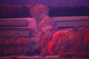 Autumn trees and fields, soft focus, Perry County, PA