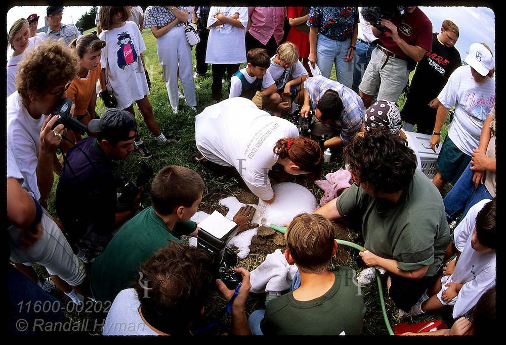 Crowd circles around women spraying soap water in burrow to catch & relocate prairie dogs;Hutchnsn Kansas