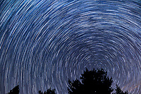 Star Trails Looking North. Composite of 112 images taken between 02:00 and 02:59 with a Nikon D3s camera and 24 mm lens (ISO 400, 24 mm, f/4, 30 sec).