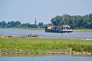 Nederland, Varik, 6-6-2019 Een vrachtschip beladen met containers vaart over de Waal richting Duitsland . Foto: Flip Franssen De Waal is het Nederlandse deel van de Rijn en de belangrijkste vaarroute van en naar Rotterdam en Duitsland . Aftakkingen zijn de minder bevaren Neder Rijn en IJssel. Foto: Flip Franssen