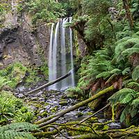 Hopetoun Falls - Otways - Victoria - Australia