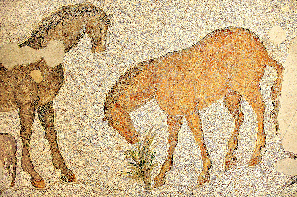 6th century Byzantine Roman mosaics of horses from the peristyle of the Great Palace from the reign of Emperor Justinian I. Istanbul, Turkey. .<br /> <br /> If you prefer to buy from our ALAMY PHOTO LIBRARY  Collection visit : https://www.alamy.com/portfolio/paul-williams-funkystock/istanbul.html<br /> <br /> Visit our TURKEY PHOTO COLLECTIONS for more photos to download or buy as wall art prints https://funkystock.photoshelter.com/gallery-collection/3f-Pictures-of-Turkey-Turkey-Photos-Images-Fotos/C0000U.hJWkZxAbg .<br /> <br /> If you prefer to buy from our ALAMY PHOTO LIBRARY  Collection visit : https://www.alamy.com/portfolio/paul-williams-funkystock/great-palace-mosaic-istanbul.html<br /> <br /> Visit our ROMAN MOSAIC PHOTO COLLECTIONS for more photos to download  as wall art prints https://funkystock.photoshelter.com/gallery-collection/Roman-Mosaics-Art-Pictures-Images/C0000LcfNel7FpLI