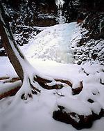 Superior State Forest, Minnesota, January, 1990.
