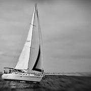 Sailboat Go Time Under Full Sail - Newport Beach, CA - Lensbaby - Black & White