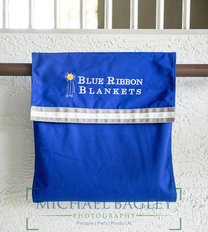 Blue Ribbon Blankets wrap pouch.
