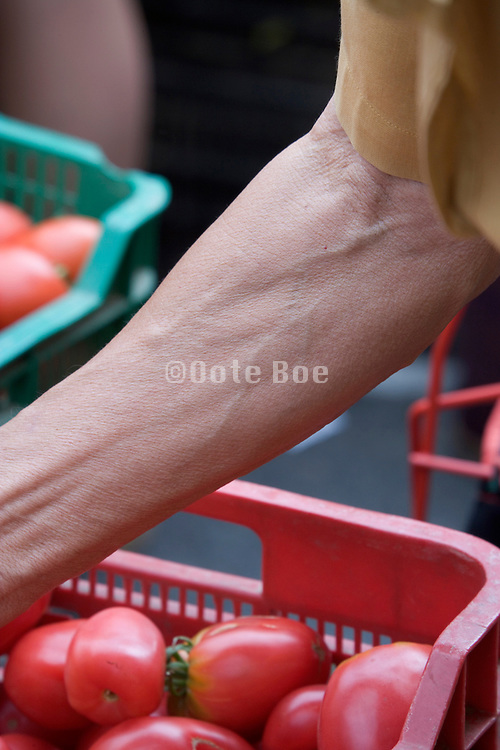 woman?s arm at a greenmarket