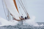 Eros sailing in the Opera House Cup.
