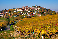 France, Centre-Val de Loire, Cher (18), le Berry, Sancerre et son vignoble // France, Cher 18, Berry, Sancerre village, vineyard