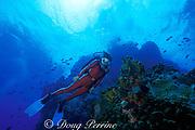scuba diver, Saba, Netherlands Antilles, ( Eastern Caribbean Sea )   MR 95