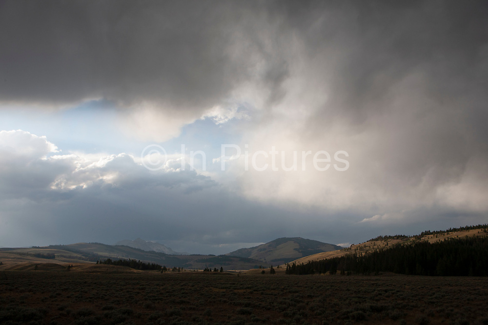 Looming dark coulds over the landscape near to Fulsolm Peak, Yellowstone National Park, Wyoming. In Big Sky Country the landscapes never disappoint, and constantly amaze. The golden evening sun combined with the could darkened sky proves a good combination.