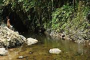 El chamán / comunidad indígena emberá, Panamá.<br /> <br /> Edición de 10 | Víctor Santamaría.