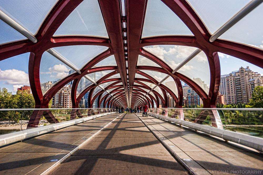 Peace Bridge (Interior)