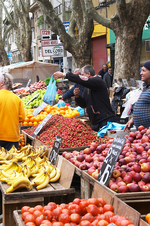 A street market merchant with a stall selling fruits and vegetables, tomatoes, bananas, apples strawberries Montevideo, Uruguay, South America