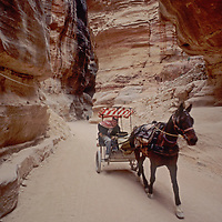 A horse pulls a cart through the Siq, a dramatic slot canyon leading to Petra, Jordon,