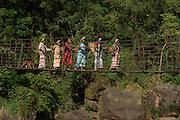 Suspension bridge over Simtung River<br /> Home of Living bridges or Root bridges (Ficus elastica)  Renee<br /> Khasi Tribe<br /> Nongriat, Khasi Hills<br /> Meghalaya, ne India<br /> Range: South China, NE India, Burma