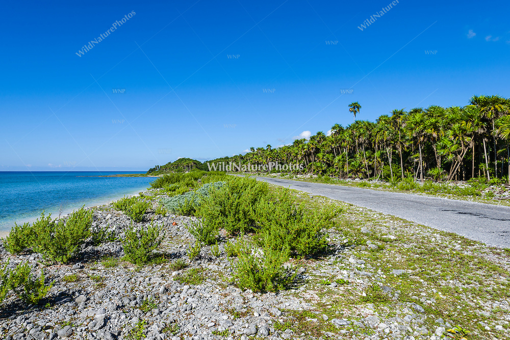 There is only one road on Guanahacabibes Peninsula, and it goes all the way to the western-most point of Cuba.