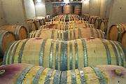 Domaine de Canet-Valette Cessenon-sur-Orb St Chinian. Languedoc. Barrel cellar. France. Europe.