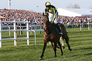 Go Conquer and jockey Sam Twiston-Davies head to the start for the 5:15pm The Randox Health Grand National Steeple Chase (Grade 3) 4m 2f during the Grand National Meeting at Aintree, Liverpool, United Kingdom on 6 April 2019.