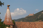 roof top stork's nest ch. st ulrich in back ribeauville alsace france