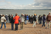People watching bottle-nosed dolphin, Tursiops truncatus, jumping, Moray Firth, Inverness-shire, Highland, July 2009..