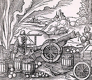 Gunners calculating the elevation of a piece of artillery using a clinometer and a quadrant marked with shadow scales.  Around them are barrels of gunpowder, cannon balls of various sizes.  On the left a mortar is being discharged.    From 'Architechtur .. Mathematischen .. Kunst'  by Gaultherius Rivius (Nuremberg, 1547). Woodcut.